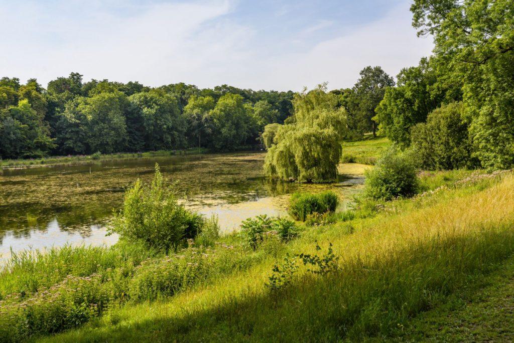 B1 Parc de Woluwe - Woluwe Park_JPR9301_© visit.brussels - Jean-Paul Remy